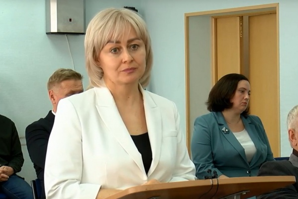 Светлана Дейнеко выступает перед котласскими депутатами