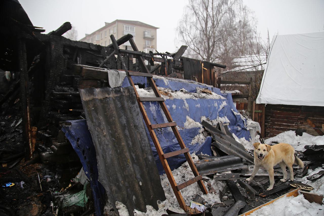Внучка схватила собачку и выпрыгнула. В Петербурге после пожара без дома осталась семья из 36 человек