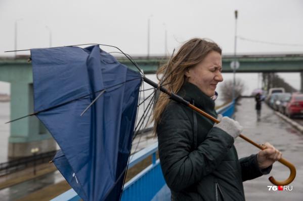 На Ярославль обрушатся дождь и ветер