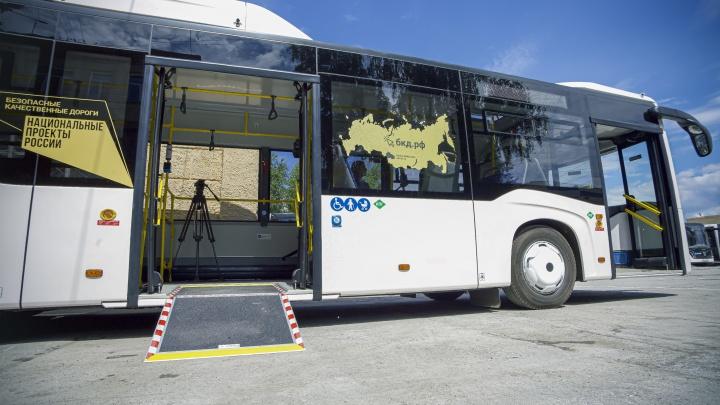 «Мэрии придется платить за перевозку воздуха»: новосибирец протестировал новые автобусы — изучаем плюсы и минусы