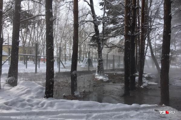 Сточные воды разлились на территории лесопарка