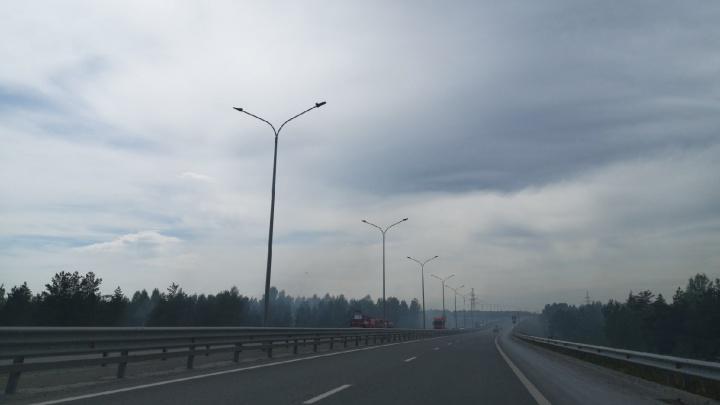 В районе объездной — задымление. Тюменцы сообщают о лесном пожаре