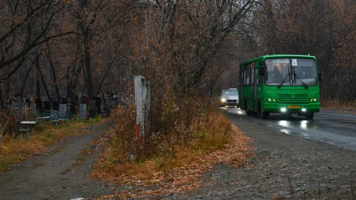 Пешком через лес и кладбище: как мы выбирались из нового района Екатеринбурга, где не хватает транспорта