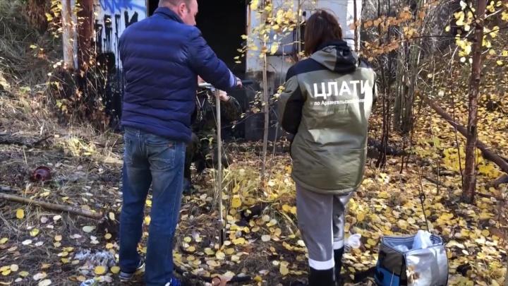 В Архангельске обнаружили очередной разлив нефтепродуктов