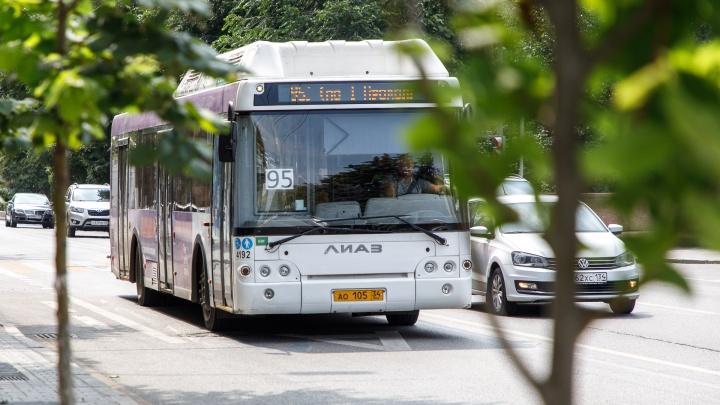 «Умерли — не то слово. Мы едва не сдохли»: волгоградцы пожаловались на убийственную жару в автобусах