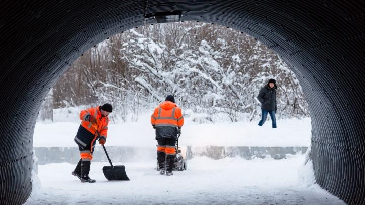 Крепкие морозы еще вернутся: какой будет погода на выходных и в начале февраля в Поморье