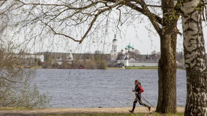 Водоканал хочет забрать берег Павловской рощи и оградить его трехметровым забором