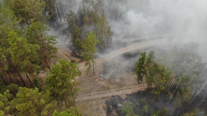 Люди молятся о дожде и, как чуда, ждут Ил-76. Хроника борьбы с сильными пожарами в Тюменской области