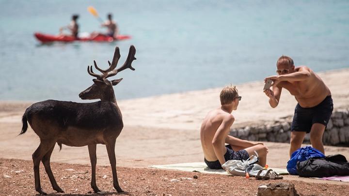 Отпуск в пандемию: правила въезда в Хорватию в 2021 году