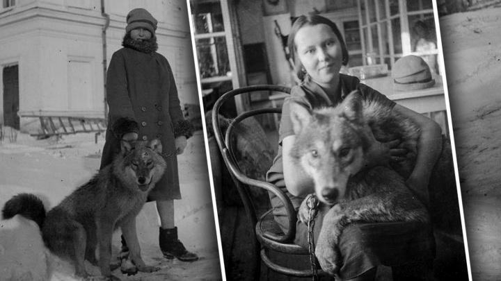 Девушка с волком: история векового снимка и200животных, живших в самом центре Омска