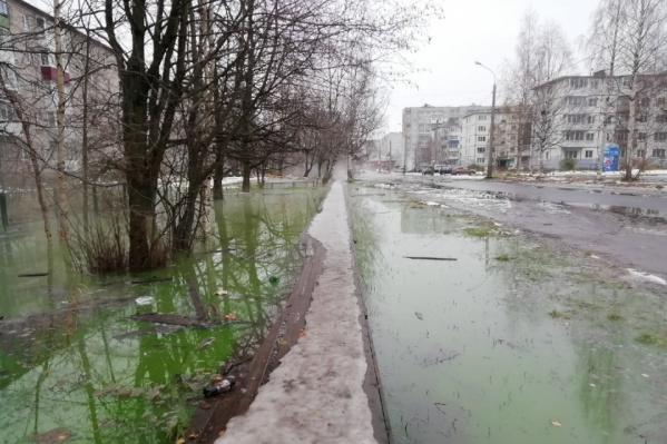 Прошлой осенью в Соломбале зеленая вода стала сигналом об аварии на теплотрассе