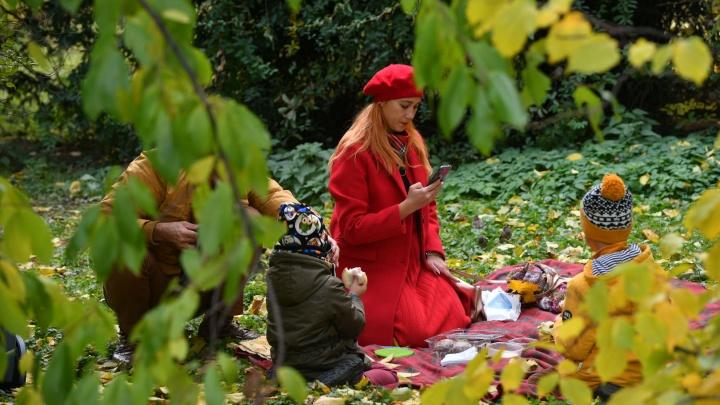 Тиктоки, фотосессии и сказочные пикники. Как екатеринбуржцы провожают золотую осень