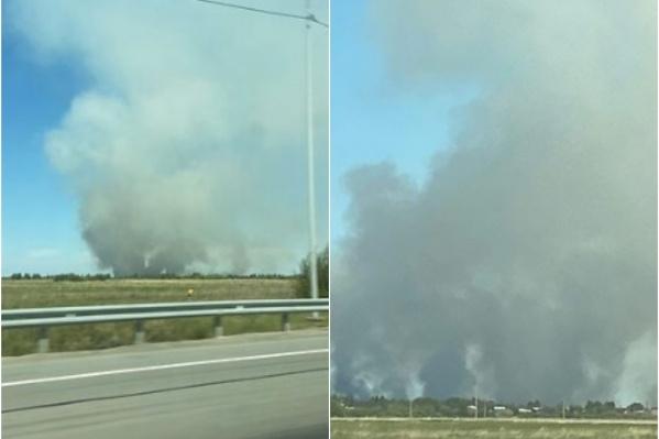 Дым увидели проезжающие по Тобольскому тракту автомобилисты