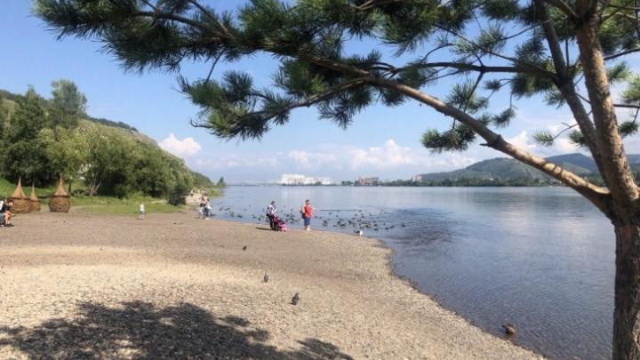 Тепло и засуха: синоптики рассказали, каким будет лето в Красноярском крае