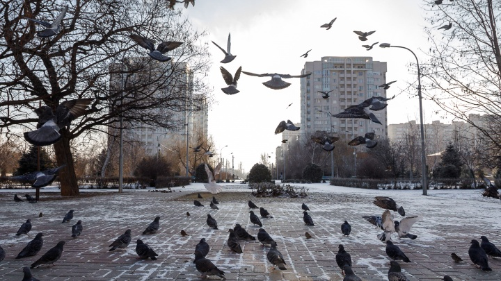 Много солнца не ждите: Волгоград ждет пятничный ад для метеозависимых горожан