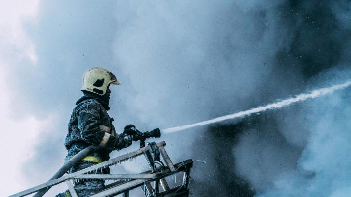Лед и пламя: как тушили крупный пожар на Вавилова