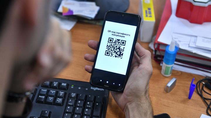 Свердловские власти придумали альтернативу QR-кодам. Нужна будет специальная печать