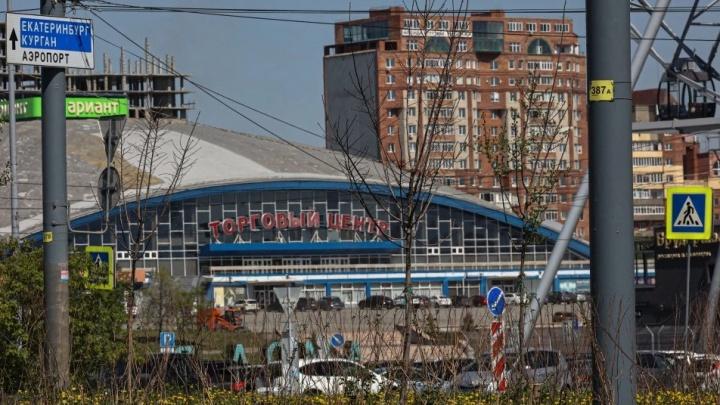В мэрии посчитали, сколько деревьев не прижилось после рекордного озеленения Челябинска в прошлом году