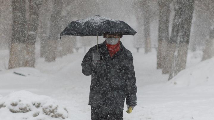 А снег идет: как Волгоград пережил очередной удар причерноморского циклона
