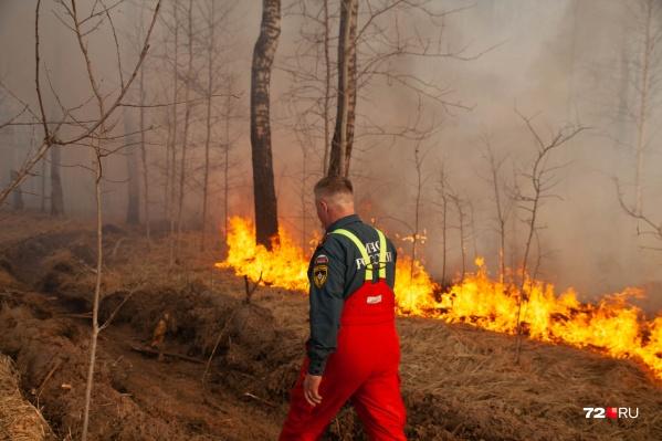 С апреля в Тюменской области выгорели сотни тысяч гектаров лесов и полей
