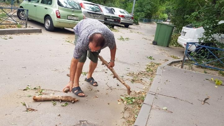 Повезло, что никого не убило: смотрим на последствия пылевой бури над Волгоградом и областью