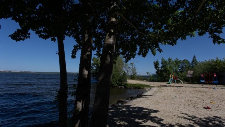 Свой пляж и соседи-депутаты: изучаем уютное (и дорогое) садовое товарищество на берегу Шершней