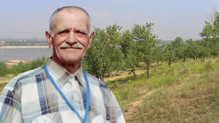 В Волгограде на острове Сарпинском бесследно исчез пожилой грибник