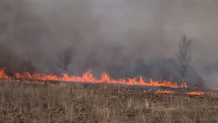 Ярославская область в огне: какие районы охватили полевые пожары
