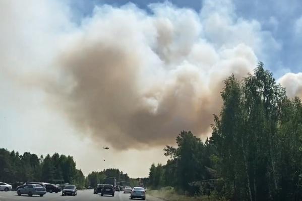 """По предварительным данным, пожар распространился <nobr class=""""_"""">на 12 гектаров</nobr>"""