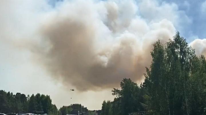 Из-за сильного лесного пожара перекрыли движение по трассе Тюмень — Омск