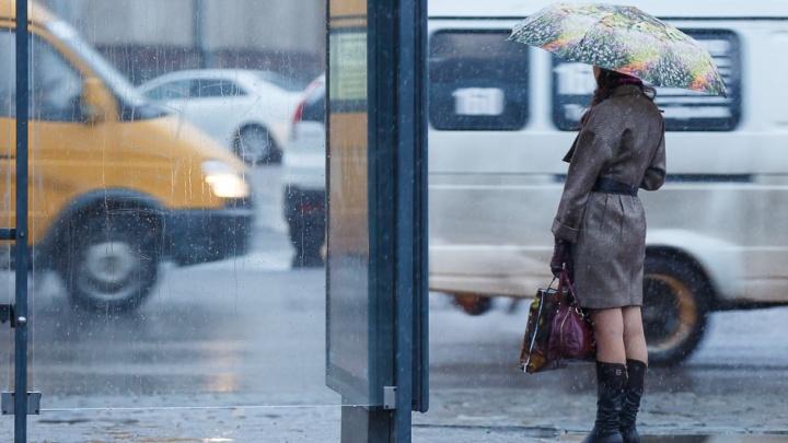 Волгоград оказался на линии фронта: климатолог рассказал, какая погода будет в апреле