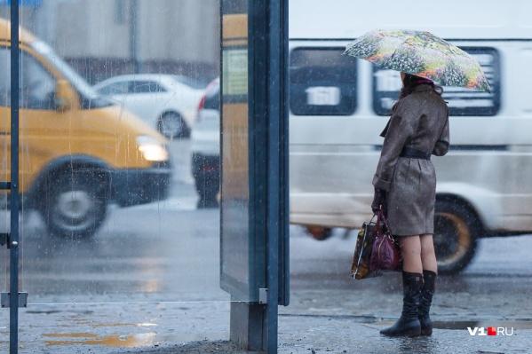 Климатолог рассказал о непредсказуемой апрельской погоде в Волгограде