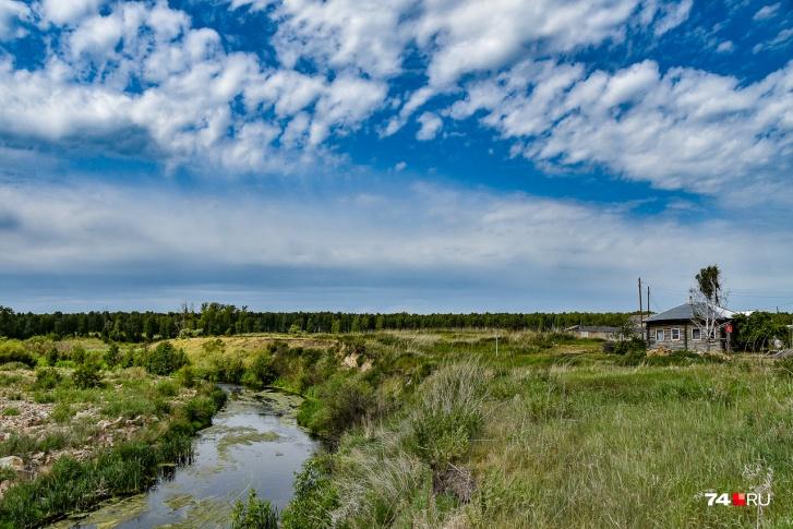 По данным ученых, главным загрязнителем ила в Тече возле Бродокалмака является цезий-137. Также обнаруживаются кобальт-60 и стронций-90