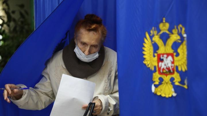 С детьми, питомцами и нарушениями: как проходили выборы в Новосибирске — фоторепортаж