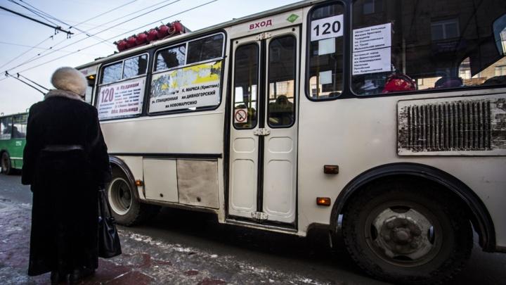 Транспорт пропал с карт: в новосибирской системе навигации произошел сбой