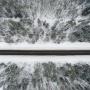 Для безопасности водителей на дорогах Ярославской области появится4G