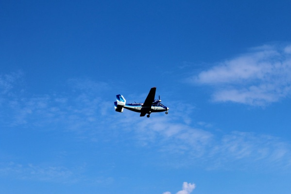 На борту самолета, по предварительной информации, находятся четыре ребенка