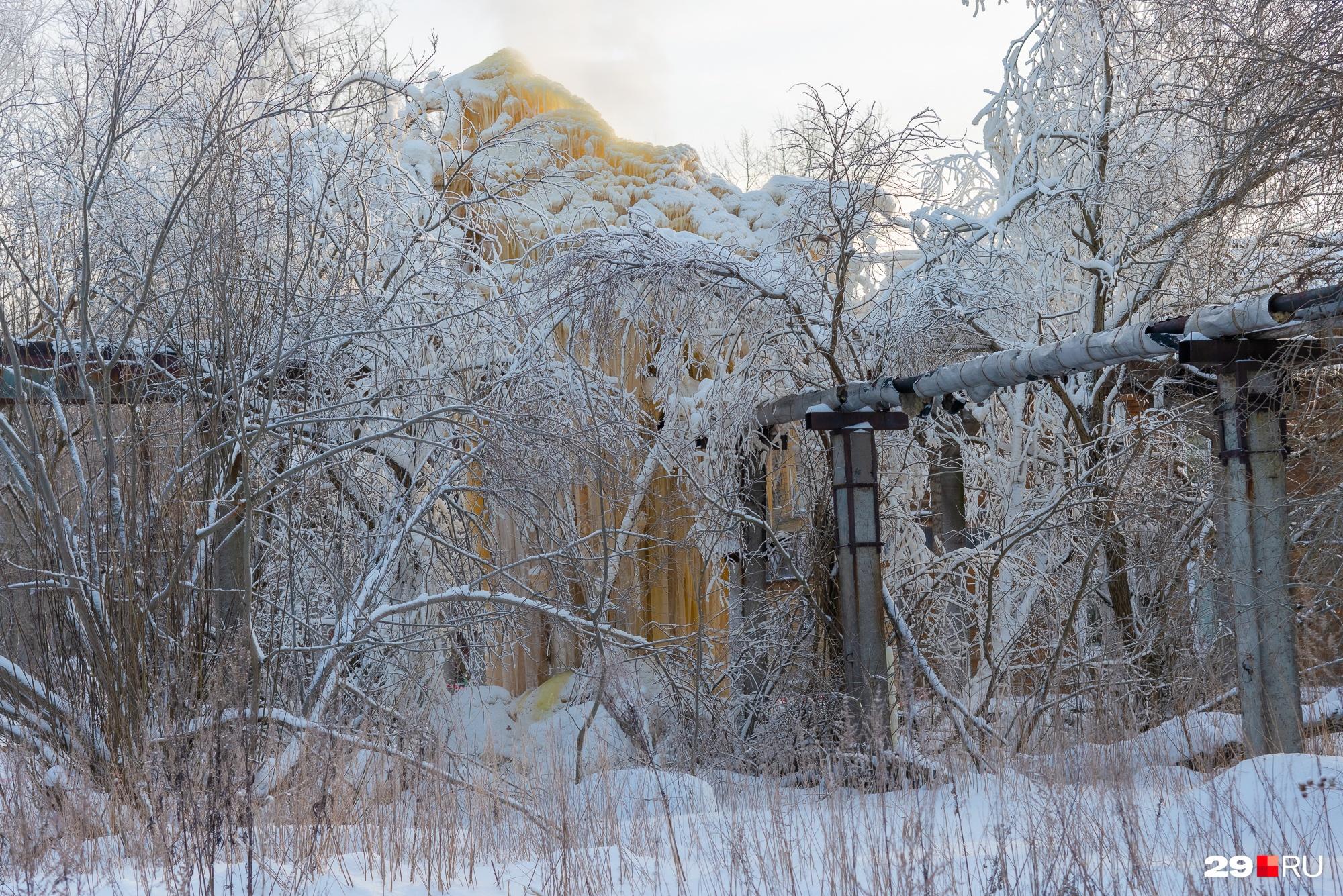 Ледяной взрыв видно еще далеко от места аварии на сетях. Из-за деревьев угрожающе выглядывает его верхушка