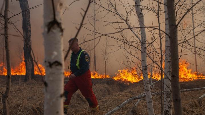 Огненная зона ЧС: как тюменские спасатели, лесники и жители отстаивали дома и деревни от стихии