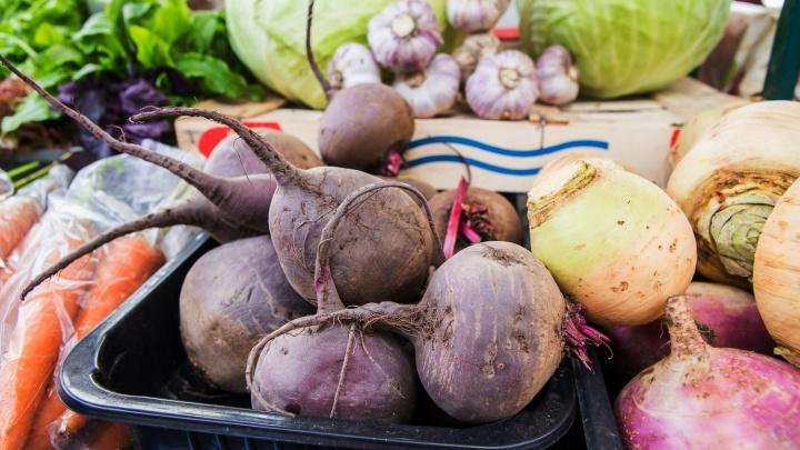 Новосибирскстат заявил о снижении цен на продукты — что подешевело сильнее всего