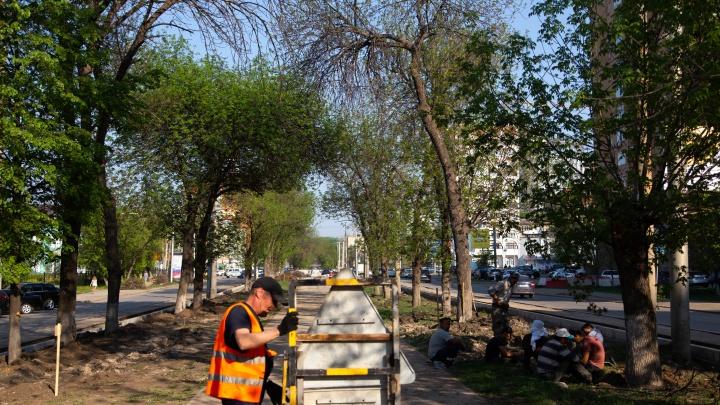 В Уфе во время ремонта бульвара Ибрагимова обнаружили человеческие останки
