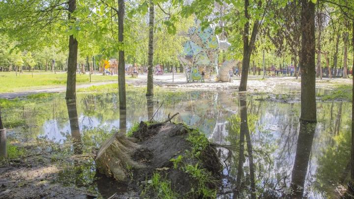 «Парк перекроили и бросили»: колонка журналиста, шокированного состоянием Юбилейного парка в Ярославле