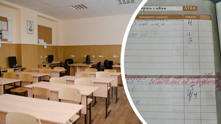 Мяукали на уроке: самые смешные и странные замечания от учителей в дневниках новосибирцев