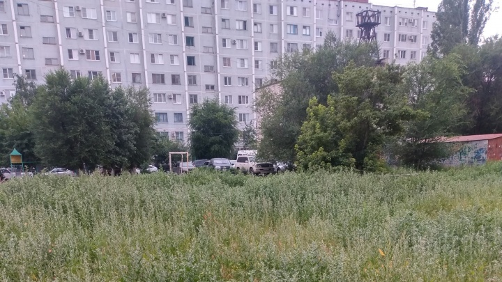«Наши дети заблудились в лебеде»: в Волгограде дворы захватывает крайне аллергенный бурьян
