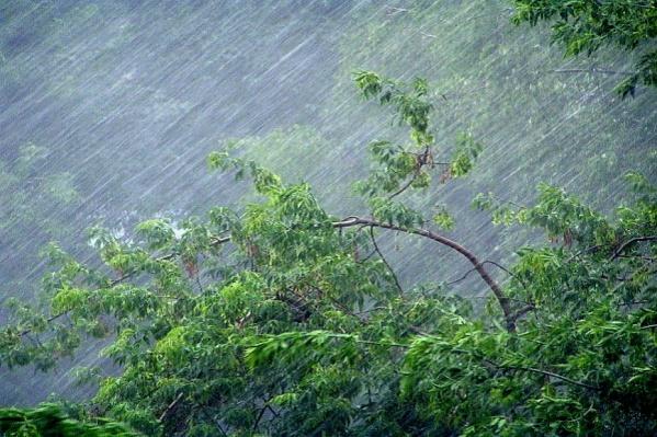 """В грозу скорость ветра может достичь <nobr class=""""_"""">25 метров</nobr> в секунду"""