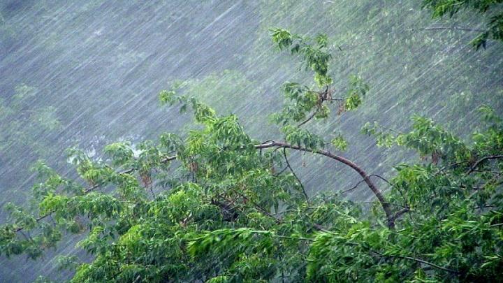 В Зауралье прогнозируют грозу, град и порывы ветра до 25 метров в секунду