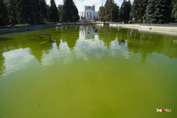Чашу фонтана чистили недавно, но из-за технической поломки вода снова позеленела