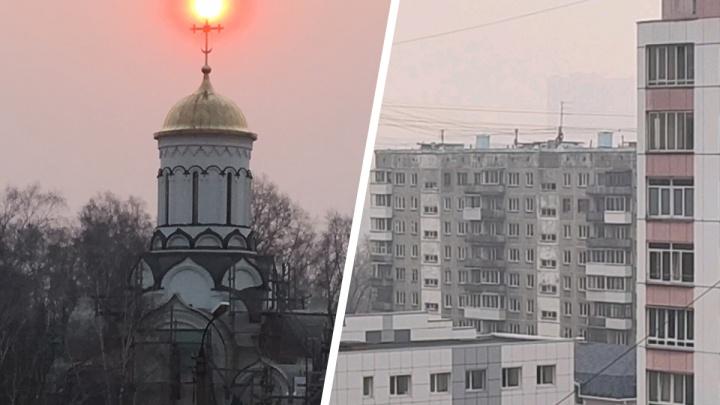 «Дышать нечем»: в Новосибирске дует ветер из Омской области, где горят леса