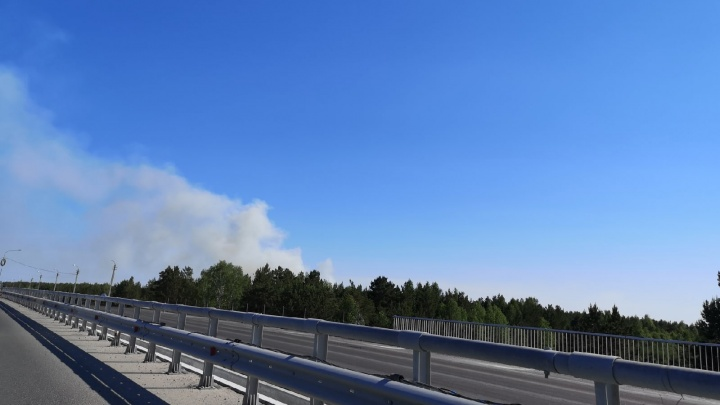 Клубы дыма видят из разных районов. Под Тюменью произошел пожар