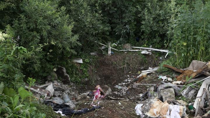 Нашли в овраге в простынях: фото с места, где обнаружили тело пропавшей девушки с афрокудрями